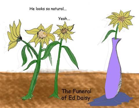 DaisyFuneral